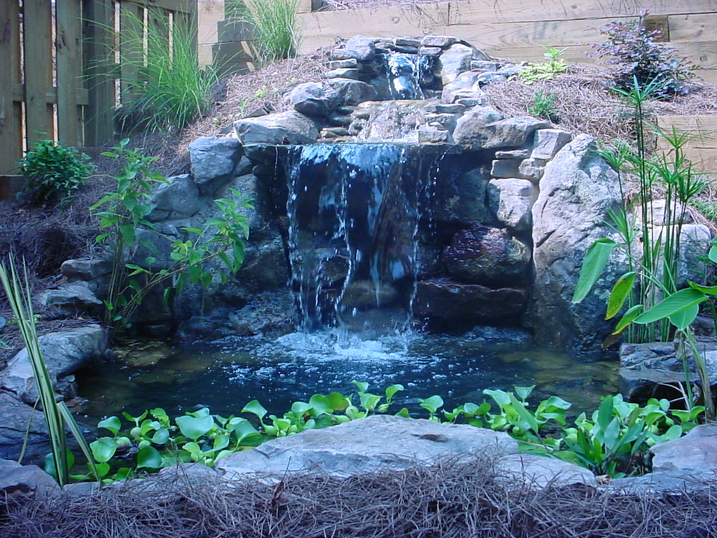 Antigua Pond