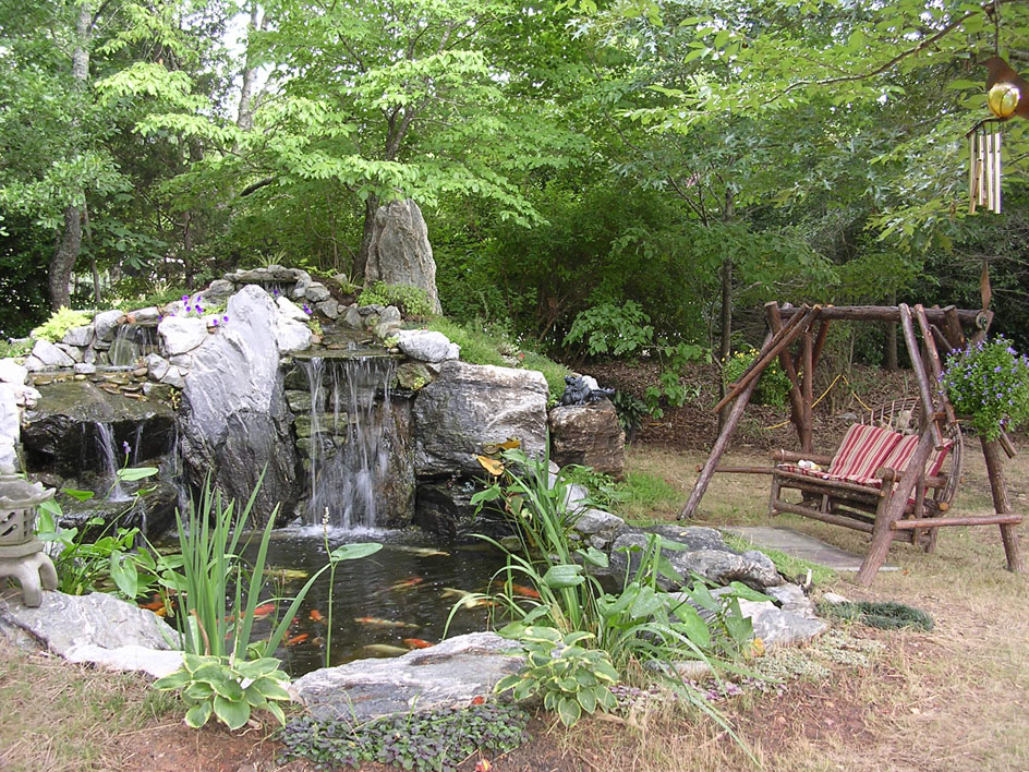 Our Home Pond