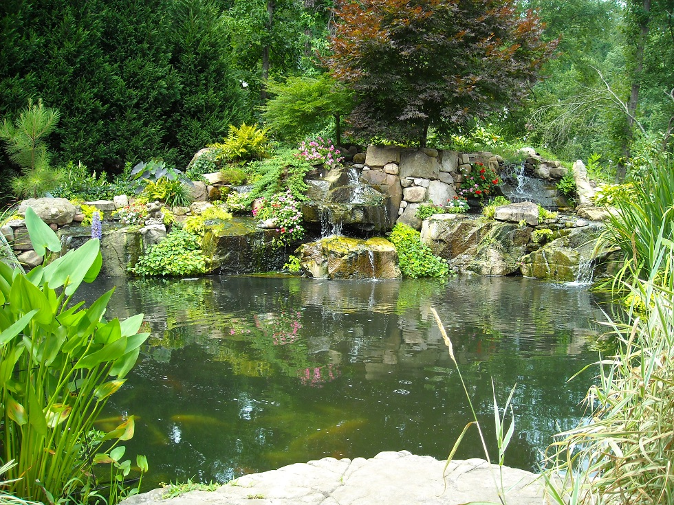 Greg & Bridgett Griffins Huge Koi pond