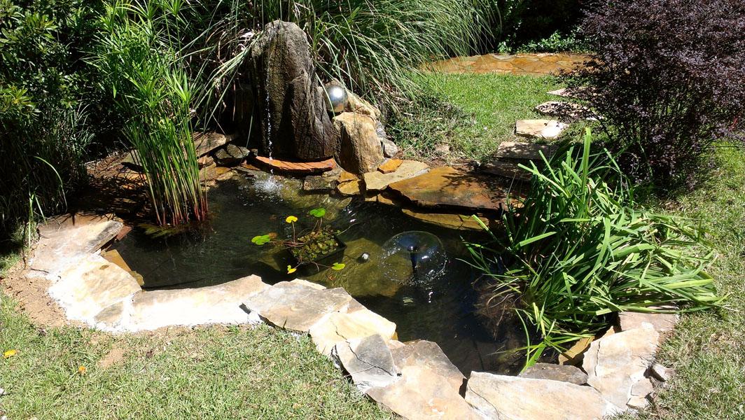 Small renovation pond