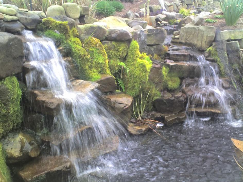 Jennings Pond