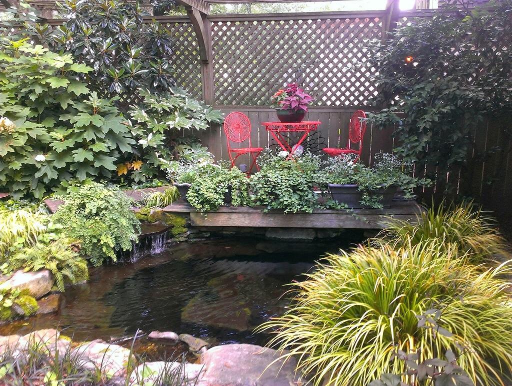 Midtown pond 2